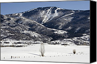 Snowboard Canvas Prints - Steamboat - Colorado Canvas Print by Brendan Reals