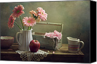 Scarf Photo Canvas Prints - Still Life With Pink Gerberas And Red Apple Canvas Print by Copyright Anna Nemoy(Xaomena)