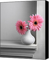 Background Pyrography Canvas Prints - Still Life with Pink Gerberas Canvas Print by Krasimir Tolev