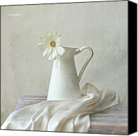 Indoors Canvas Prints - Still Life With White Flower Canvas Print by by MargoLuc