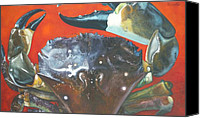Jon Ferrentino Canvas Prints - Stone Crab  Canvas Print by Jon Ferrentino