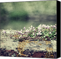 Stone Wall Canvas Prints - Stone Wall With Flowers Canvas Print by Silvia Otten-Nattkamp Photography