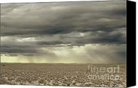 Prairie Sky Art Canvas Prints - Storm Ray Desert Canvas Print by Andrea Hazel Ihlefeld