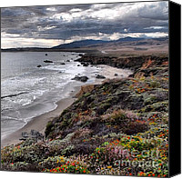 Cambria Photo Canvas Prints - Stormy Central CA Coastline Canvas Print by Phil Huettner