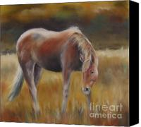 Wild Horse Pastels Canvas Prints - Stormy Sky Canvas Print by Sabina Haas