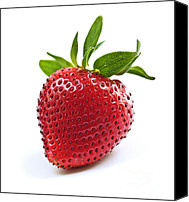Strawberry Canvas Prints - Strawberry on white background Canvas Print by Elena Elisseeva