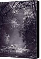 Parkway Canvas Prints - Stream Light B W Canvas Print by Steve Gadomski