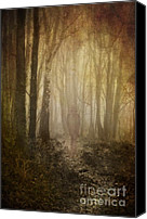 Spook Canvas Prints - Stroll Through My Mind Canvas Print by Meirion Matthias