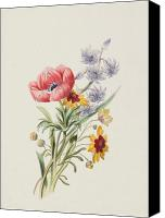 Watercolor On Paper Canvas Prints - Study of wild flowers Canvas Print by English School