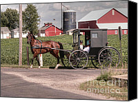 Amish Canvas Prints - Such grace - such serenity Canvas Print by David Bearden