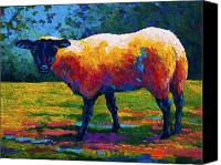 Marion Rose Canvas Prints - Suffolk Ewe III Canvas Print by Marion Rose