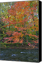 Autumn Photographs Canvas Prints - Sugar Maple Canvas Print by Phill  Doherty