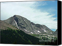 Digital Canvas Prints - Summer at 10000 feet Elevation Canvas Print by Judy Powell