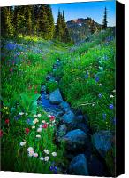Hillside Canvas Prints - Summer Creek Canvas Print by Inge Johnsson