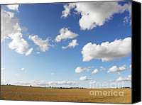 Souvenir Canvas Prints - Summer field Canvas Print by Pixel Chimp
