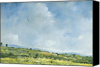Clouds Canvas Prints - Summer hawk over Brading down Canvas Print by Alan Daysh