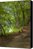 New Hampshire Canvas Prints - Summer Walk Canvas Print by Joann Vitali