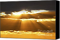 Cloudscape Canvas Prints - Sun rays at sunset sky Canvas Print by Elena Elisseeva