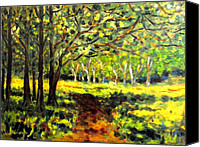 Treescape Canvas Prints - Sun Through The Trees Canvas Print by John  Nolan