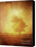 Open Mixed Media Canvas Prints - Sundown Landscape Canvas Print by Lutz Baar