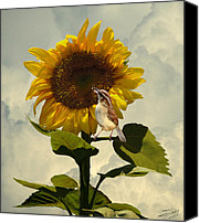 Wren Digital Art Canvas Prints - Sunflower and Carolina Wren Canvas Print by IM Spadecaller