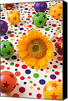 Ball Canvas Prints - Sunflower and colorful balls Canvas Print by Garry Gay