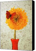 Activity Canvas Prints - Sunflower and red butterfly Canvas Print by Garry Gay