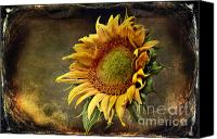 Sari Canvas Prints - Sunflower Art 2 Canvas Print by Sari Sauls