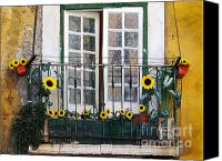 Peeling Canvas Prints - Sunflower balcony Canvas Print by Carlos Caetano