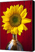 Vases Canvas Prints - Sunflower Close Up Canvas Print by Garry Gay