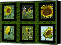 Lovely Looking Flower Mixed Media Canvas Prints - Sunflower Collage Canvas Print by Debra     Vatalaro