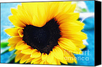 Flower Photo Canvas Prints - Sunflower in heart shape Canvas Print by Kristin Kreet
