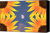 Abstracts Canvas Prints - Sunflower Moon Canvas Print by James Bo Insogna