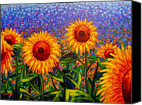 Starry Painting Canvas Prints - SunFlower Scape Canvas Print by John  Nolan