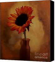 Canvas Wrap Canvas Prints - Sunflower Seed Maker Canvas Print by Marsha Heiken