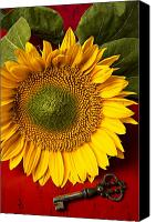 Comfort Canvas Prints - Sunflower with old key Canvas Print by Garry Gay