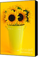 Decoration Photo Canvas Prints - Sunflowers in vase Canvas Print by Elena Elisseeva