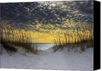 Coast Tapestries Textiles Canvas Prints - Sunlit Passage Canvas Print by Janet Fikar