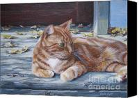 Tabby  Painting Canvas Prints - Sunning on the Porch Canvas Print by Anda Kett