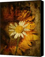 Texture Floral Canvas Prints - Sunny Antiqued Canvas Print by Tingy Wende