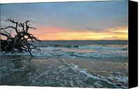 Ocean Scene Canvas Prints - Sunrise at Driftwood Beach 1.3 Canvas Print by Bruce Gourley