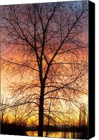 Buy Framed Prints Canvas Prints - Sunrise December 16th 2010 Canvas Print by James Bo Insogna