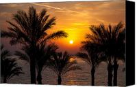 Daybreak Canvas Prints - Sunrise over the Red Sea Canvas Print by Jane Rix