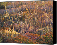 Dry Painting Canvas Prints - Sunrise reflections on dried grass Canvas Print by Marco Busoni