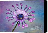 Susan Canvas Prints - Sunscape Daisy Canvas Print by Susan Candelario