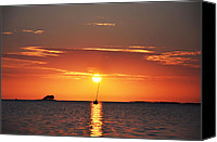 Tampa Digital Art Canvas Prints - Sunset in the Tropics Canvas Print by Bill Cannon
