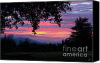 Blue Leaf Canvas Prints - Sunset Canvas Print by Kate Black