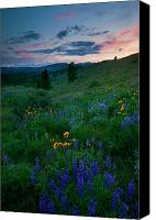 Hillside Canvas Prints - Sunset Meadow Trail Canvas Print by Mike  Dawson