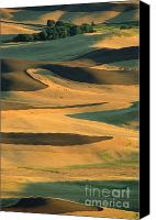 Rolling Hills Canvas Prints - Sunset on the Palouse Canvas Print by Sandra Bronstein