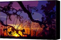 Rural Texas Canvas Prints - Sunset Silhouette Canvas Print by Stephen Anderson